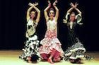 Flamenco nights in Tetería Nazarí