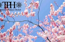 Taormina Palace Hotel - Spa & Lounge Bar