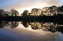 L'étang du Veulu