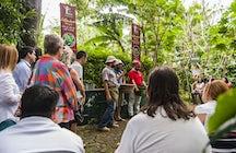 Café Britt Coffee Tours, Costa Rica