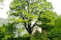 Visit church of st. George