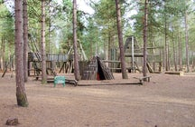 Time for adventure in the Moors Valley Country Park
