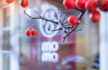 Mo Mo: Tibetan Dumpling Restaurant
