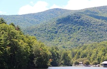 Vogel, mountain