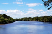 Birds Island (Isla Pajaros) in the Tempisque River, Costa Rica