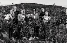 Tokaj Macik Winery, Mala Trna, Slovakia