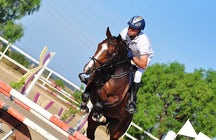 Centro Ippico Golden Horses