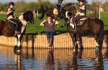 Oakridge Stables. Academy of Horse Riding