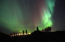 Group tour for Northern Lights