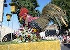 Flower Carnival, Debrecen