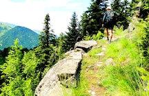 Hike & Bike in Metsovo