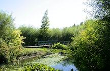 Jardins du Lac de Bambois