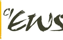 EOS ART - Cultural Organisation