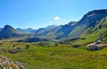 Zelengora Mountain