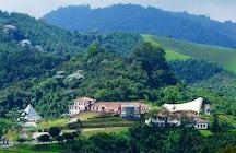 Los Yarumos Ecopark, Manizales