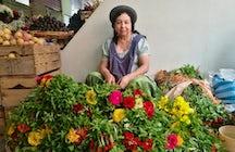 Central Market of Tarija
