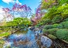 Rome Botanical Garden