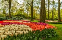 Bloomsbury Square Garden