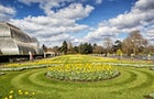 Palm House - Kew Gardens