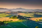 The terrific landscape of Val d'Orcia