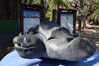 Las Baulas National Marine Park  Costa Rica