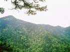 Mt. Konjuh