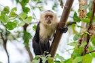 Palo Verde National Park, Costa Rica