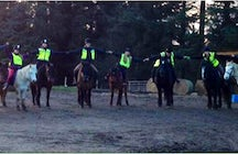 Redwing Riding School Courses