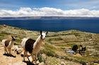 Titicaca Lake, La Paz