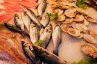 Fish market (Vismarkt), Lier