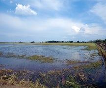 Northern Great Plain