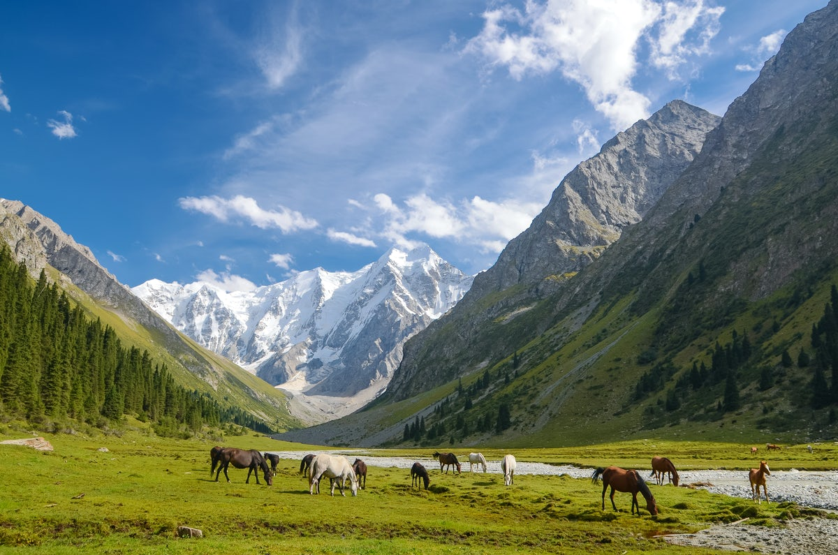 The best events in Kyrgyzstan