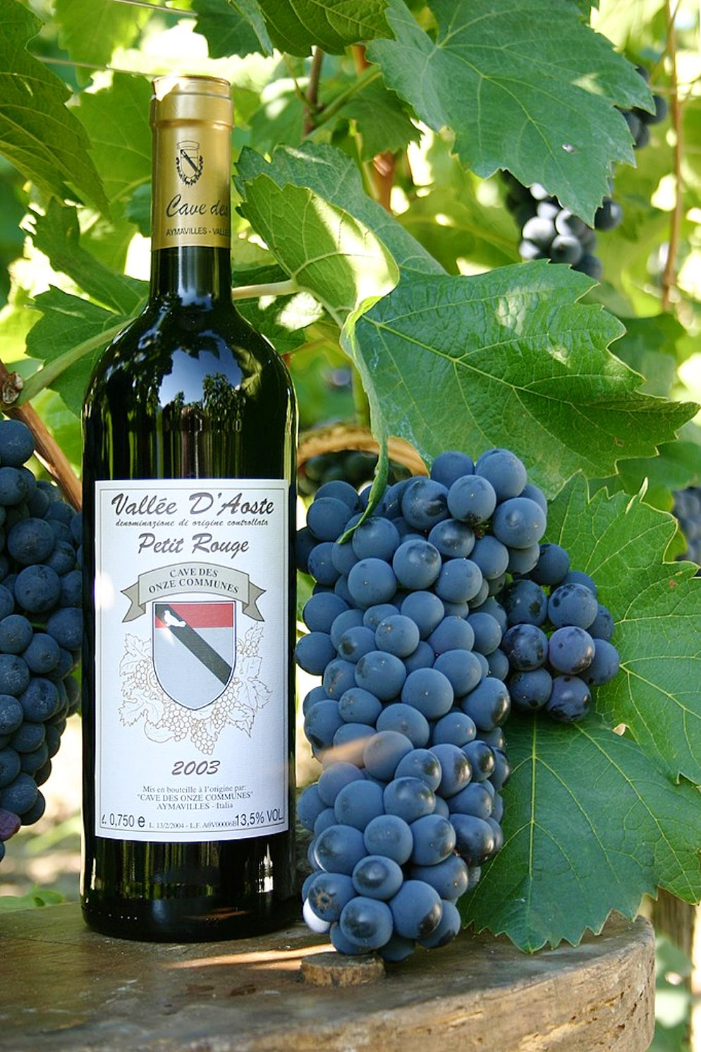 Wine from the valley. Picture © Credits to Wikipedia/Fabio Ingrosso