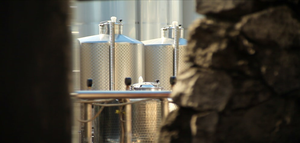 Picture © Credits to Asconi Winery