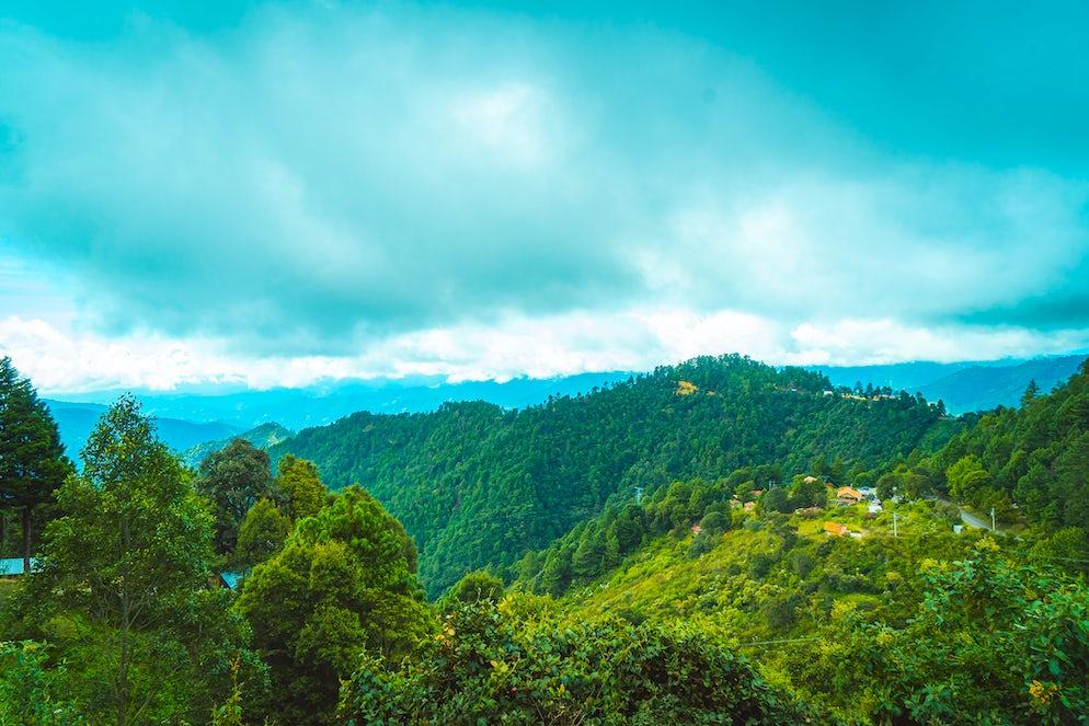 ©istock.com/Indigoai