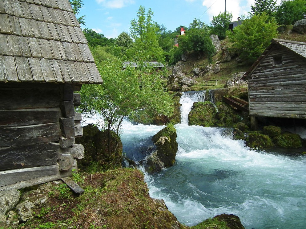 Picture © credits to Wikimedia Commons/Slobodan Čavić