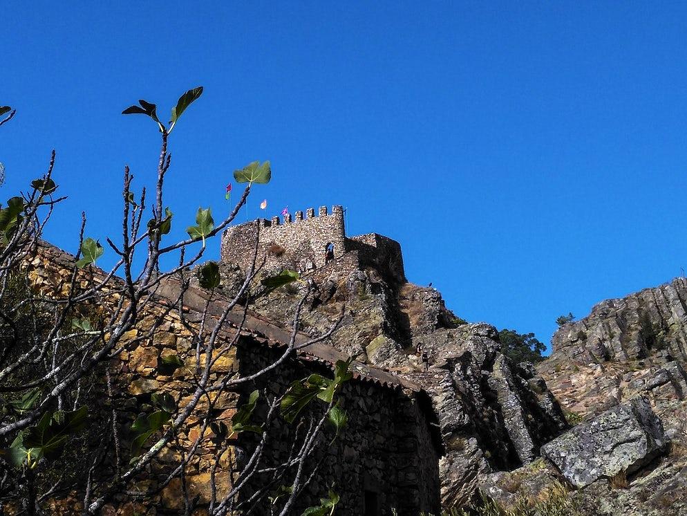© Wikimedia Commons / IldaRobalo