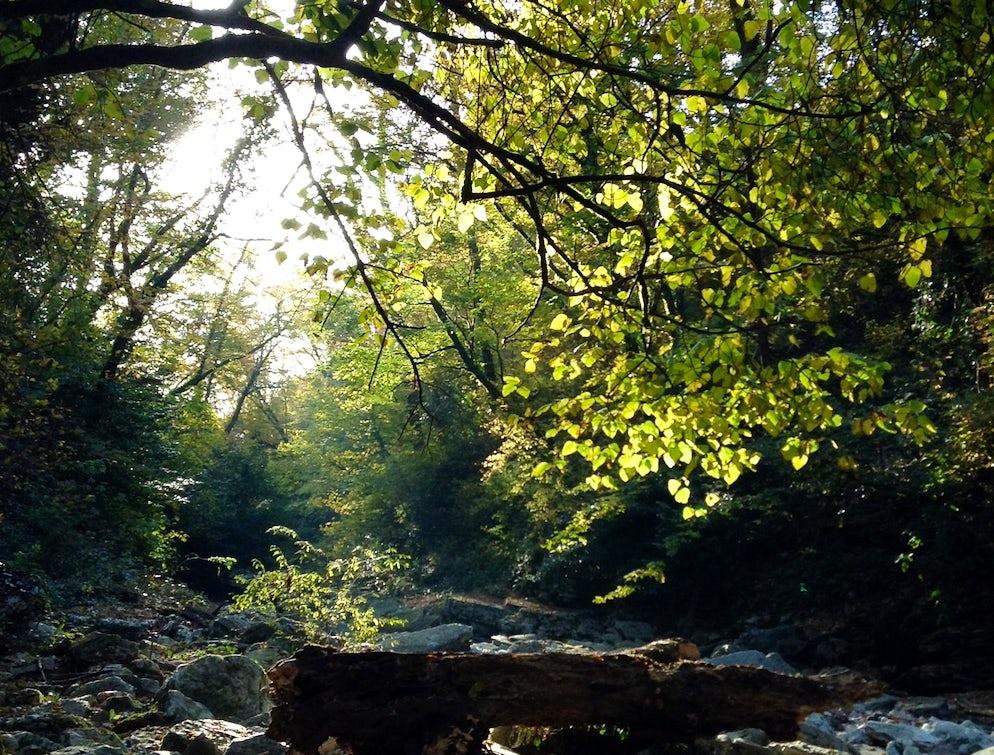 A path through the Agur Gorge