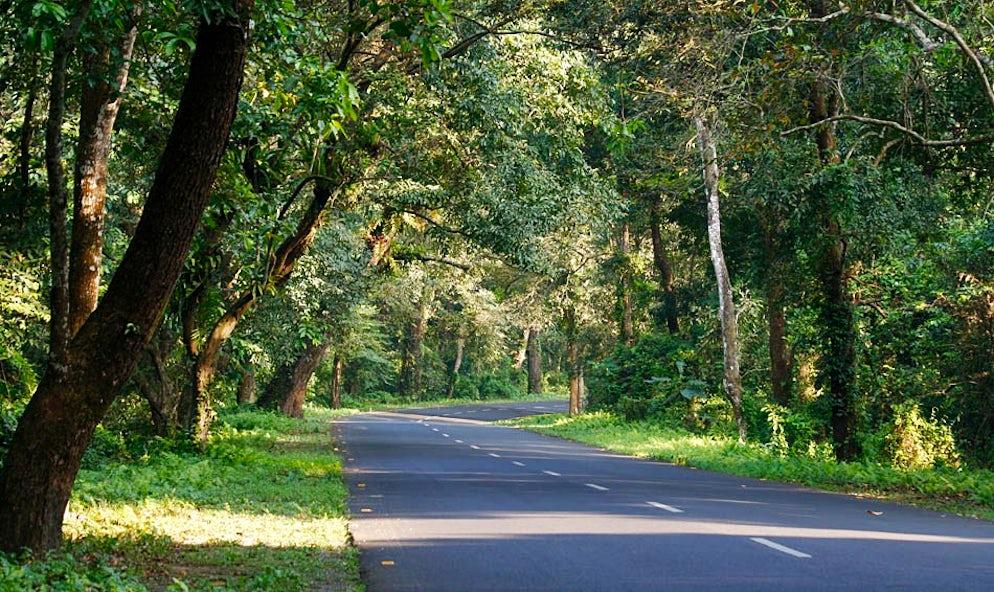 © Wikimedia Commons/ Tanmoy Bhaduri