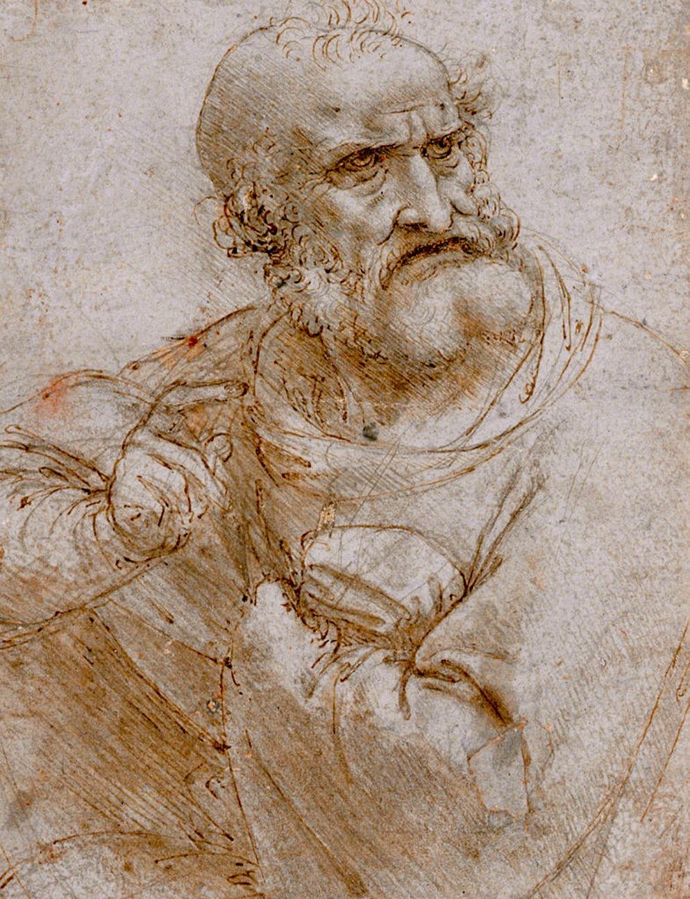 Picture © Credits to Wikipedia / Leonardo da Vinci - Albertina