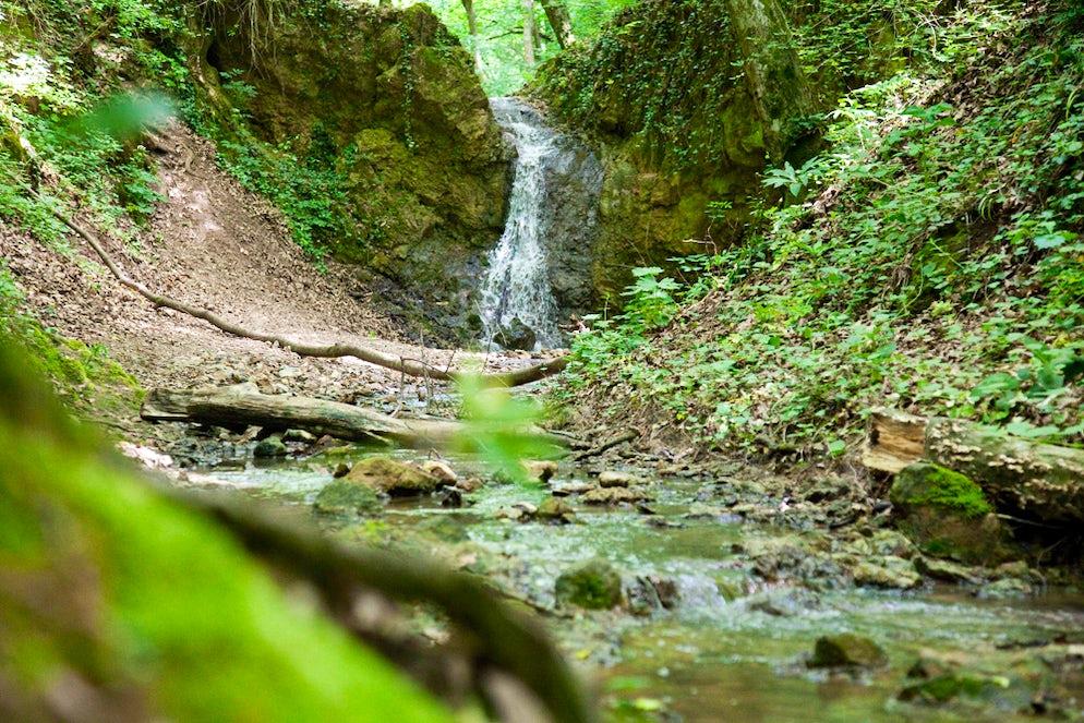 A small stream in Vrdnik © Credits to Banja Vrdnik / Termal