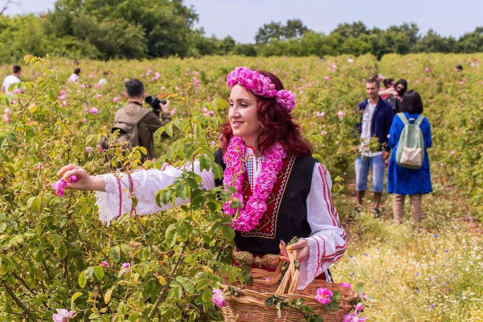 Photo © credits to iStockphoto.com/nikolay100