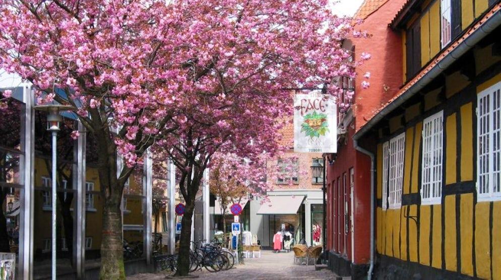 Picture © Credits to visitsvendborg