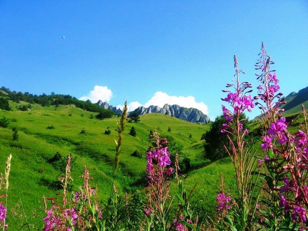 Picture © credits to National Park Sutjeska