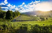 Die Weinherstellung ist das, was Moldawien so besonders macht.