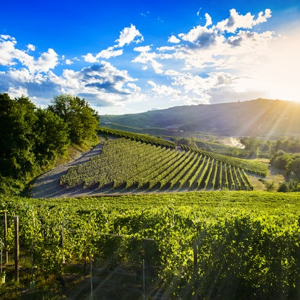 Winemaking is what makes Moldova special