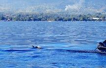 Lovina, a better Bali