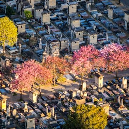 Cementerios famosos en París: Montparnasse