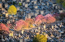 Famous cemeteries in Paris: Montparnasse