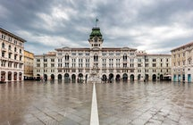 On the wine paths of Italy: Trieste